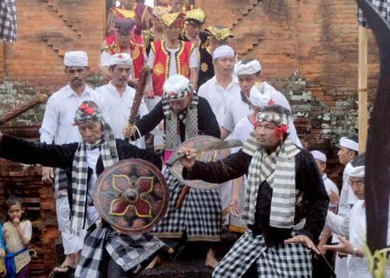 Nusabali.com - tradisi-ngerebong