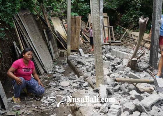 Nusabali.com - rumah-tertimpa-aren-pemilik-terluka