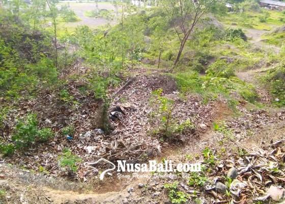 Nusabali.com - tender-tunggu-tandatangan-walikota-dan-gubernur-bali