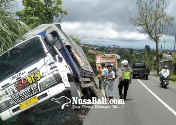 Nusabali.com - truk-pengangkut-pakan-ternak-terperosok