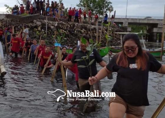Nusabali.com - sambut-dies-natalis-ke-12-stiki-lakukan-penanaman-mangrove