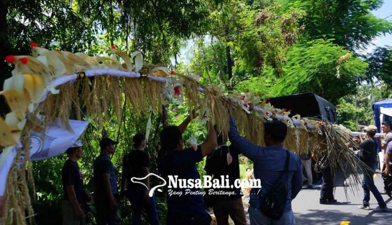 www.nusabali.com-desa-adat-jasri-kembali-pasang-penjor