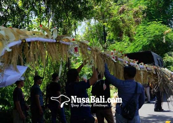 Nusabali.com - desa-adat-jasri-kembali-pasang-penjor