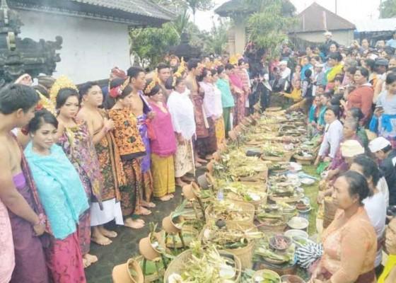 Nusabali.com - nganten-massal-di-desa-adat-pengotan-diundur