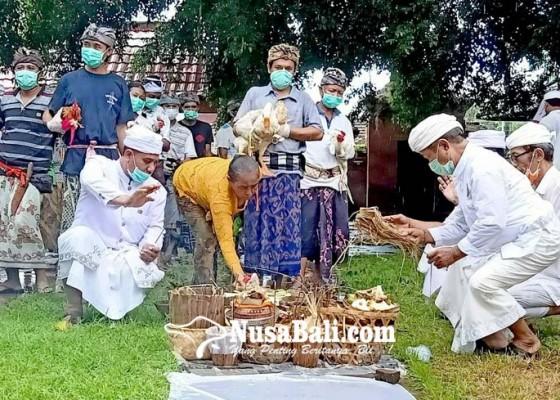 Nusabali.com - mapepada-desa-adat-buleleng-sucikan-22-hewan