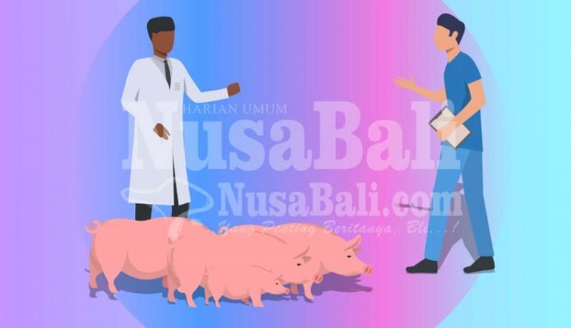 www.nusabali.com-jumlah-kematian-babi-menurun-di-tabanan