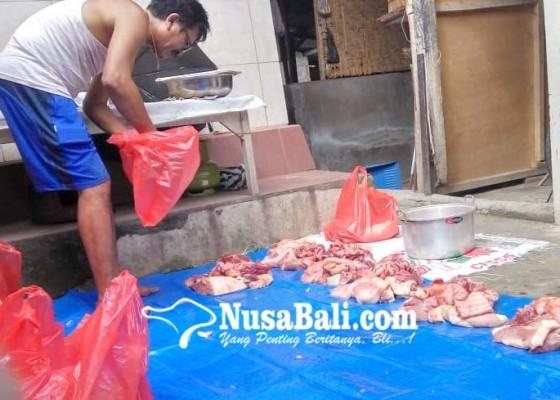 Nusabali.com - harga-babi-anjlok-masyakarat-pilih-mapatung