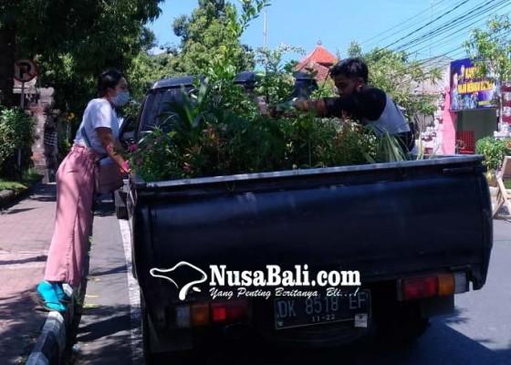 Nusabali.com - covid-19-menggugah-nandurin-karang
