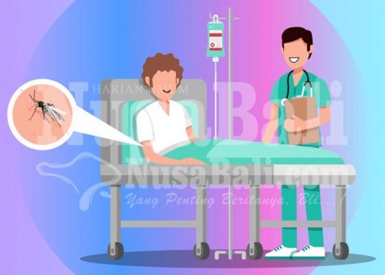 Nusabali.com - peningkatan-kasus-dbd-di-bali-akibat-wabah-corona