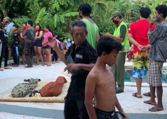Nusabali.com - dua-bocah-bersaudara-tewas-tenggelam-di-kolam-vila