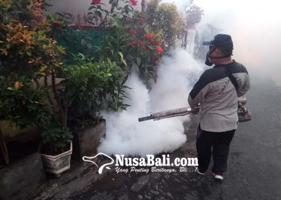 Nusabali.com - 5-bulan-dbd-tembus-1034-kasus