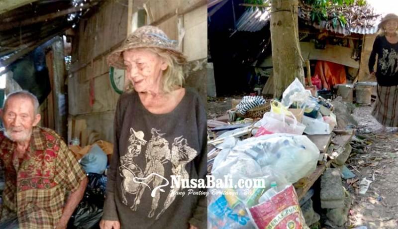 www.nusabali.com-pasutri-usia-lanjut-ini-memilih-bertahan-tinggal-di-gubuk-reot-tengah-kota-denpasar