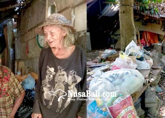 Nusabali.com - pasutri-usia-lanjut-ini-memilih-bertahan-tinggal-di-gubuk-reot-tengah-kota-denpasar