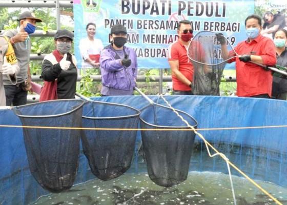Nusabali.com - bupati-tabanan-ajak-opd-beli-ikan-lele
