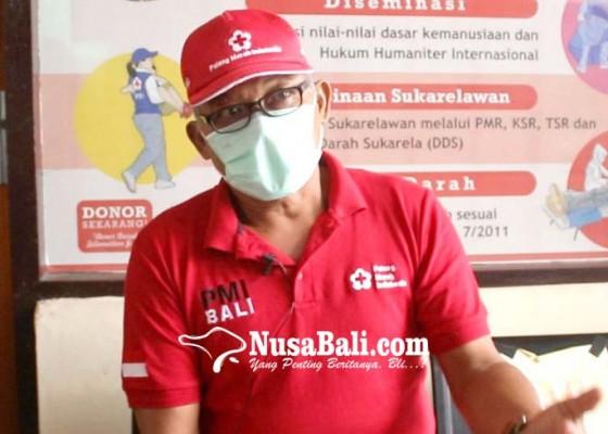 Nusabali.com - pmi-provinsi-bali-masih-penuhi-kebutuhan-darah