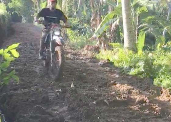 Nusabali.com - desa-bakas-buka-jalan-sawah-3-km