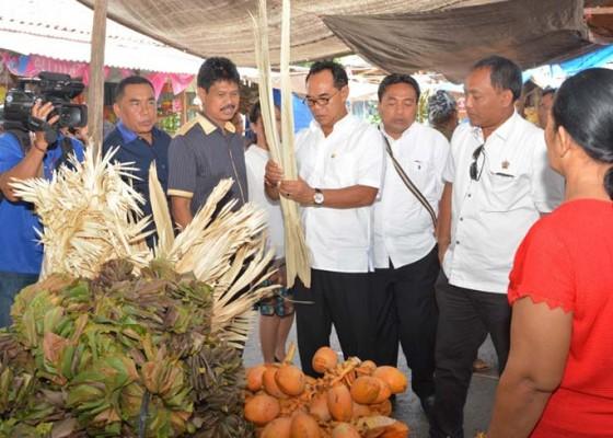 Nusabali.com - dprd-bali-rancang-perda-tanaman-yadnya