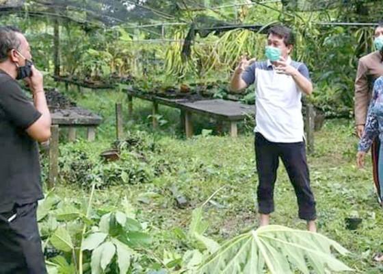 Nusabali.com - bupati-suwirta-tertibkan-penerima-bst-tak-disiplin