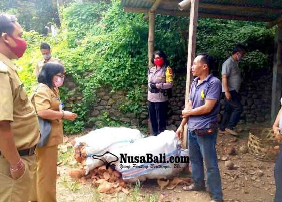 Nusabali.com - bikin-polusi-produsen-arang-di-beratan-ditegur