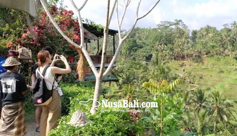 www.nusabali.com-perda-plp2b-rentan-mubazir