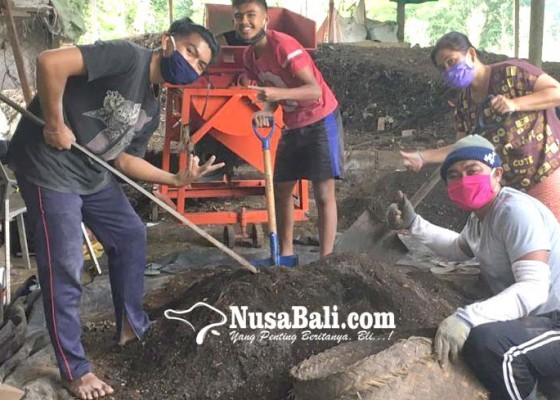Nusabali.com - permintaan-pupuk-organik-meningkat