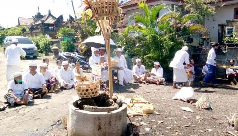 www.nusabali.com-desa-adat-pejaten-gelar-pacaruan-gering-tetumpur