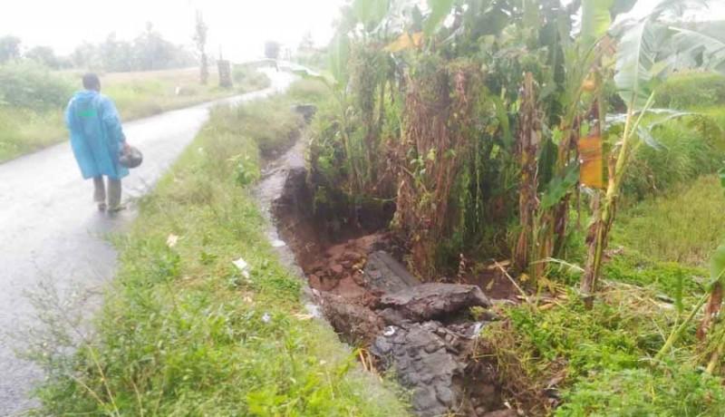 www.nusabali.com-saluran-irigasi-jebol-petani-andalkan-air-hujan