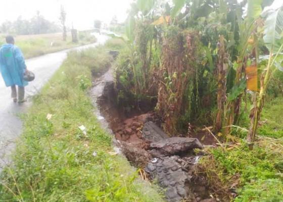 Nusabali.com - saluran-irigasi-jebol-petani-andalkan-air-hujan
