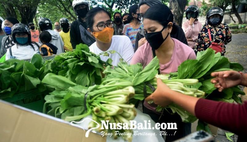 www.nusabali.com-protes-pkm-daridesaku-bagikan-sayur-gratis