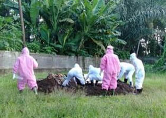 Nusabali.com - satu-pasien-covid-19-meninggal