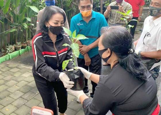 Nusabali.com - selly-mantra-ajak-masyarakat-manfaatkan-lahan-pekarangan