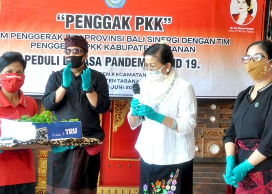 Nusabali.com - tim-pkk-provinsi-bali-dan-pkk-tabanan-bantu-paket-sembako-di-tengah-pandemi