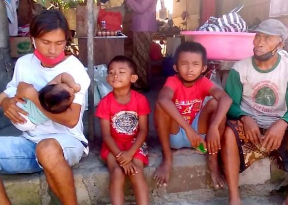 Nusabali.com - kini-diasuh-kakek-dan-neneknya-di-sebuah-gubuk