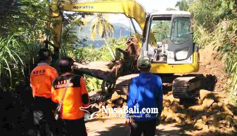 www.nusabali.com-bpbd-khawatirkan-longsor-susulan