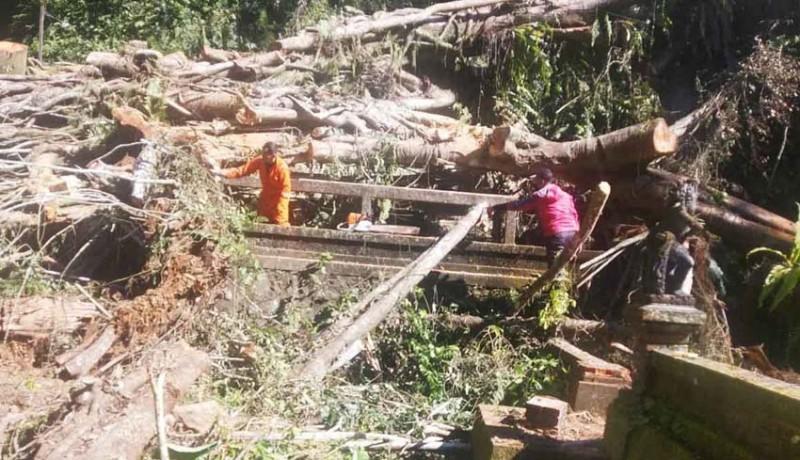 www.nusabali.com-pohon-tumbang-rusak-palinggih