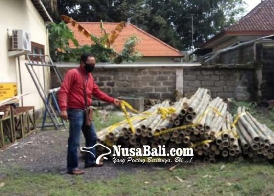 Nusabali.com - pencurian-bambu-di-penglipuran-diungkap-polisi