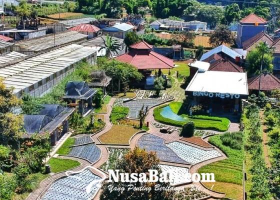 Nusabali.com - bangun-kampung-bingo-di-mana-alam-bisa-ngomong