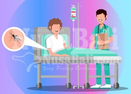 Nusabali.com - tembus-2300-kasus-dbd-periode-januari-juni-2020