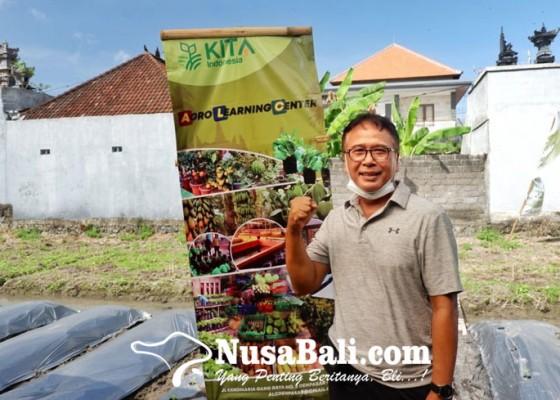 Nusabali.com - i-nyoman-bhaskara-rintis-agro-learning-center-alc