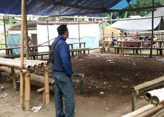 Nusabali.com - gerebeg-tajen-polisi-hanya-dapat-kalangan-kosong