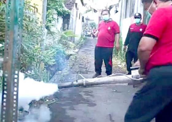 Nusabali.com - pandemi-covid-19-bupati-artha-ingatkan-masyarakat-waspada-dbd