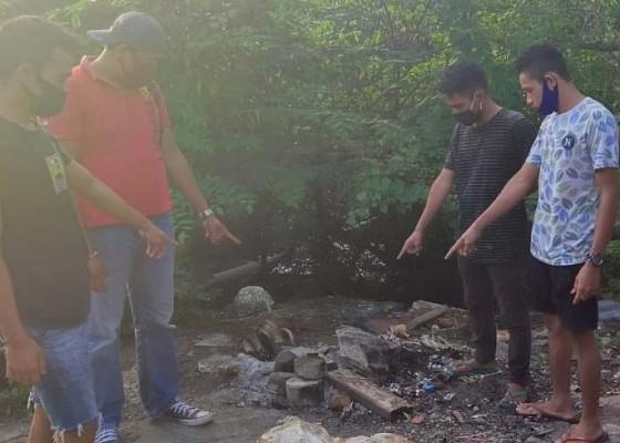 Nusabali.com - bunuh-anjing-untuk-dikonsumsi-4-pelaku-diamankan-polisi