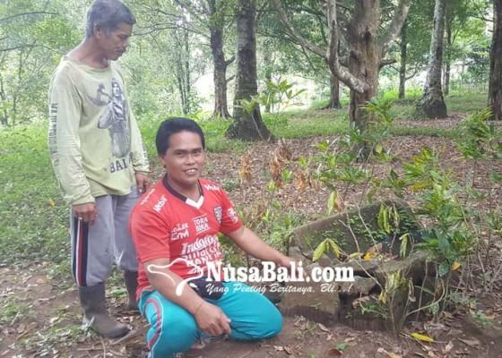 Nusabali.com - dikeramatkan-karena-dihuni-makhluk-gaib-berwujud-perempuan-cantik