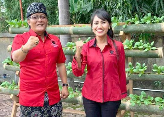 Nusabali.com - pdip-badung-bikin-gerakan-urban-farming