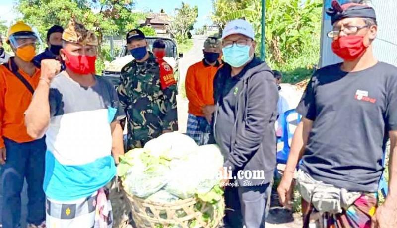 www.nusabali.com-warga-cegeng-karantina-mandiri-dinas-pertanian-bantu-sayur