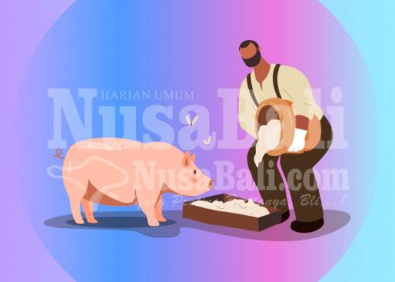 Nusabali.com - setelah-asf-bali-waspada-flu-babi