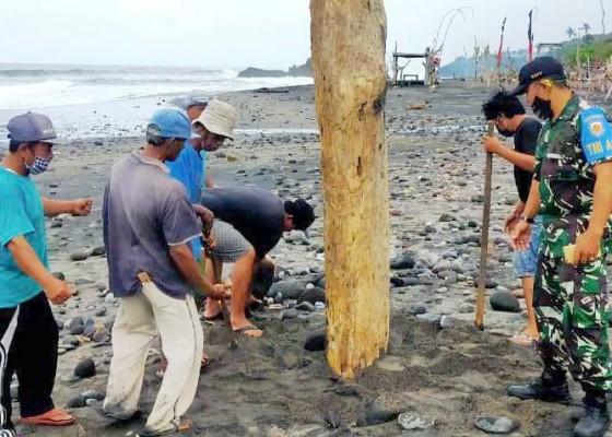 Nusabali.com - pantai-di-tabanan-masih-tutup-dari-kunjungan-wisatawan