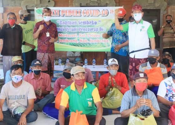 Nusabali.com - 50-petani-penggarap-terima-bantuan-sembako