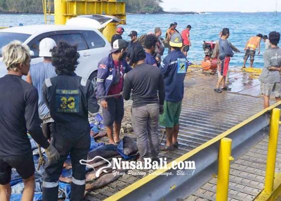 Nusabali.com - 20-penyelam-bersihkan-limbah-dermaga-ii