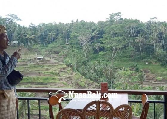 Nusabali.com - kaca-cermin-bikin-silau-view-ceking-rice-terrace
